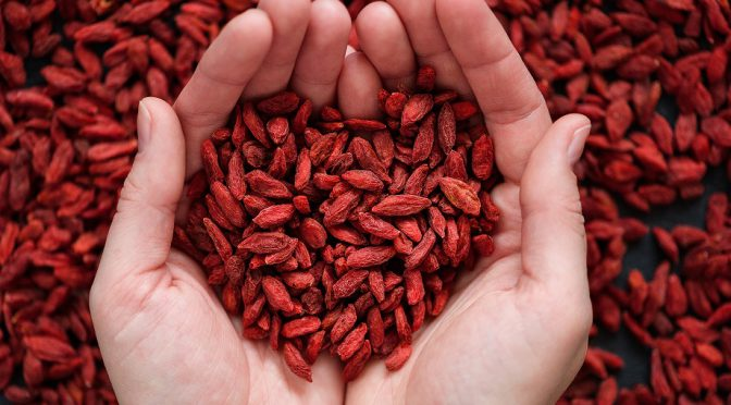goji berry antioxidant, goji berries benefits